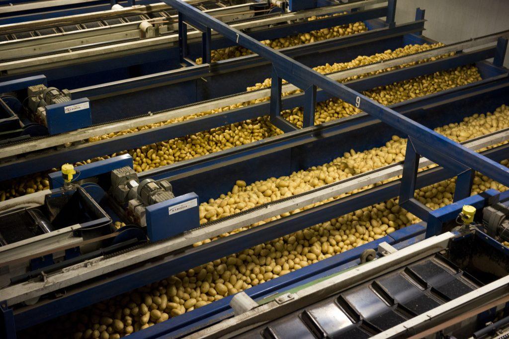 Quik's aardappelen worden verwerken in een hightech fabriek